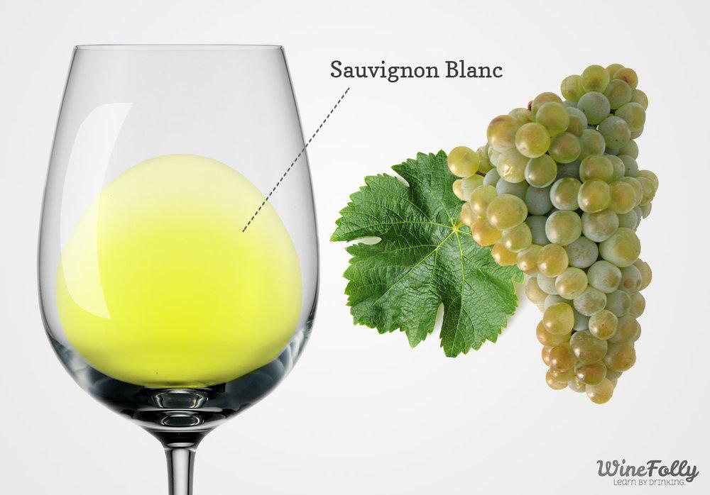 Sauvignon Blanc Grapes wine