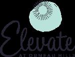 Elevate Logo (Custom).png