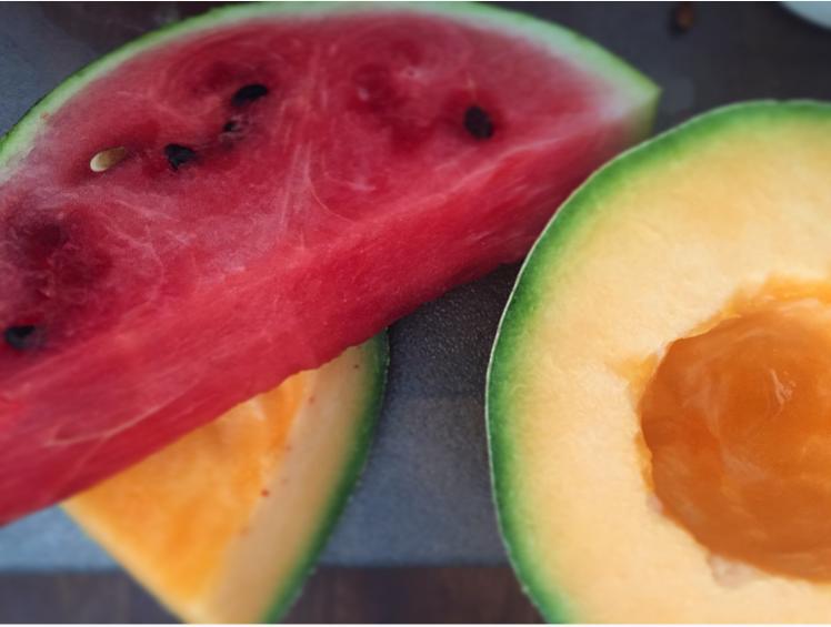 Watermelon_Melon_Aguas Frescas