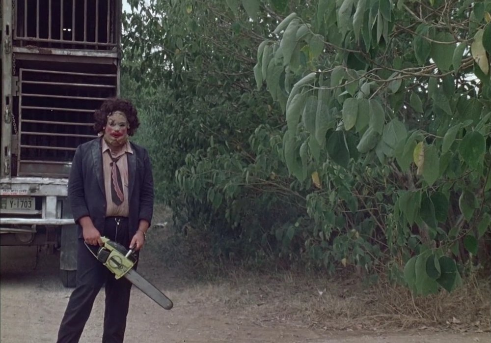 The Texas Chainsaw Massacre (Photo:   imdb.com  )
