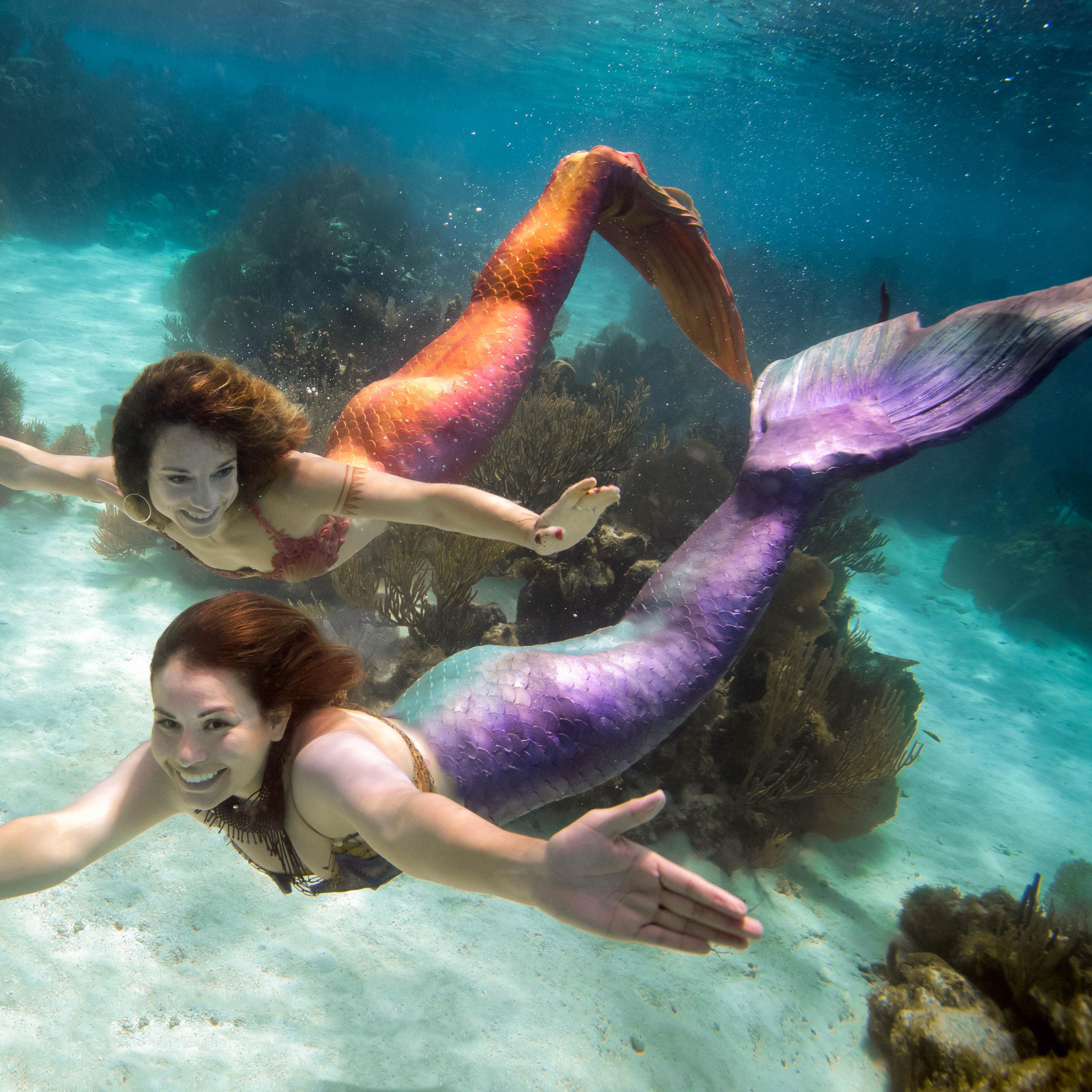 real live mermaids