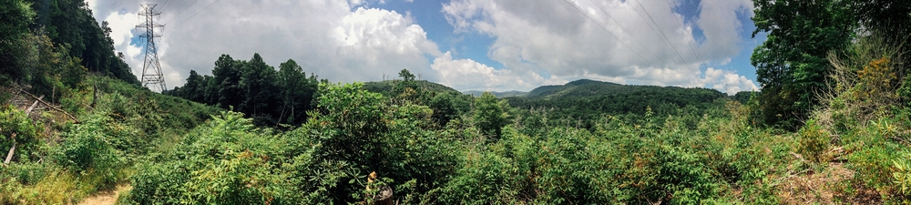 iPhone panorama of a view off of Devil's Elbow trail, on the way to Rider Falls.
