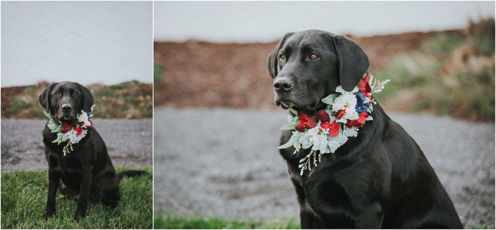 warm-springs-old-dairy-virginia-rustic-wedding-northeast-tennessee-elopement-adventuruous-photographer-katy-sergent_0024.jpg