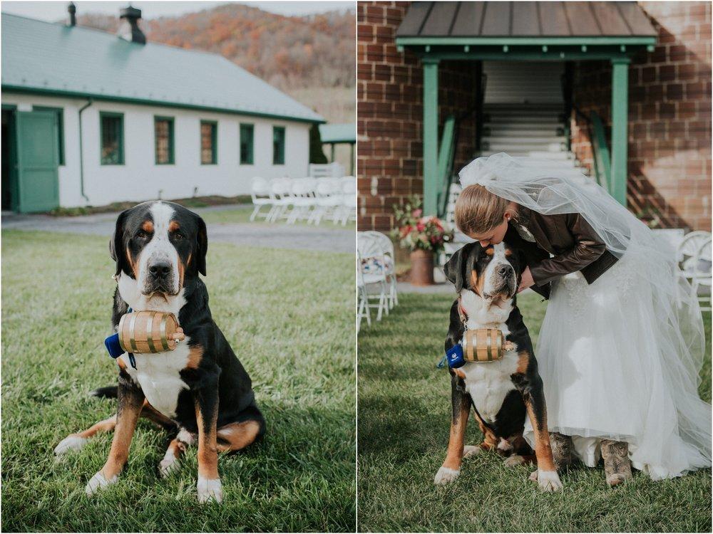 warm-springs-old-dairy-virginia-rustic-wedding-northeast-tennessee-elopement-adventuruous-photographer-katy-sergent_0029.jpg
