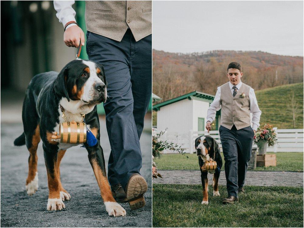warm-springs-old-dairy-virginia-rustic-wedding-northeast-tennessee-elopement-adventuruous-photographer-katy-sergent_0079.jpg