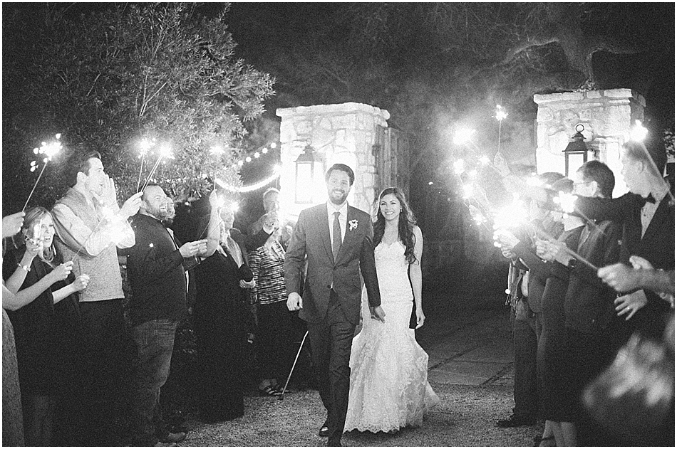 Central Texas Wedding | Fine Art | Vineyards at Chappel Lodge | Spring Wedding | Austin-37.jpg