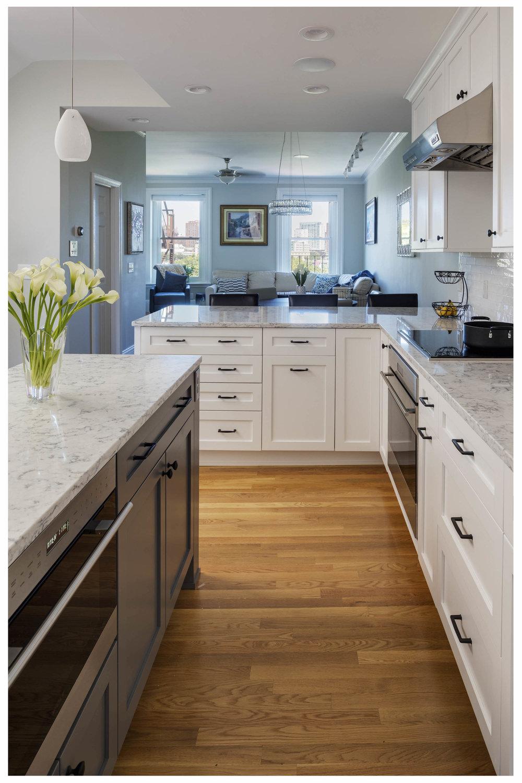 KitchenVisions-Transitional-Kitchen-Boston-1.jpg