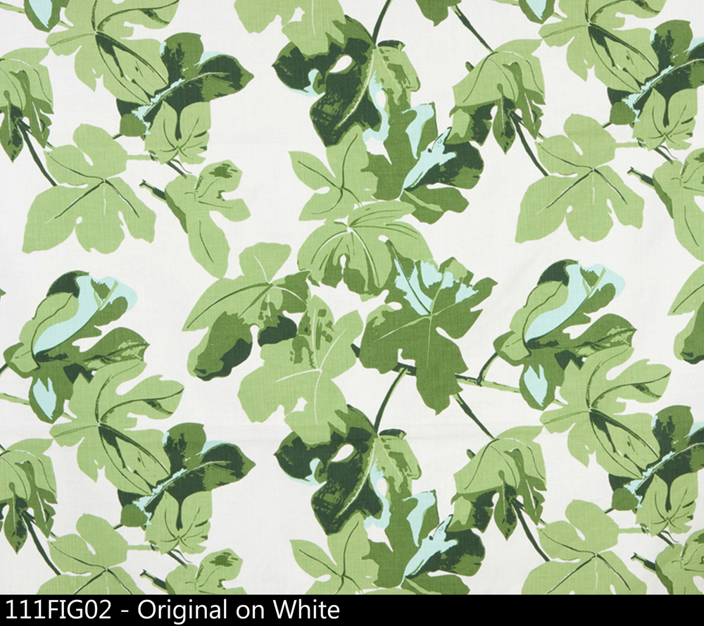 Fig+Leaf+Original+on+White.jpg