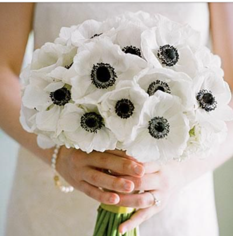 Black and white anemones.... so cool and would work beautifully with  black and white graphic art !