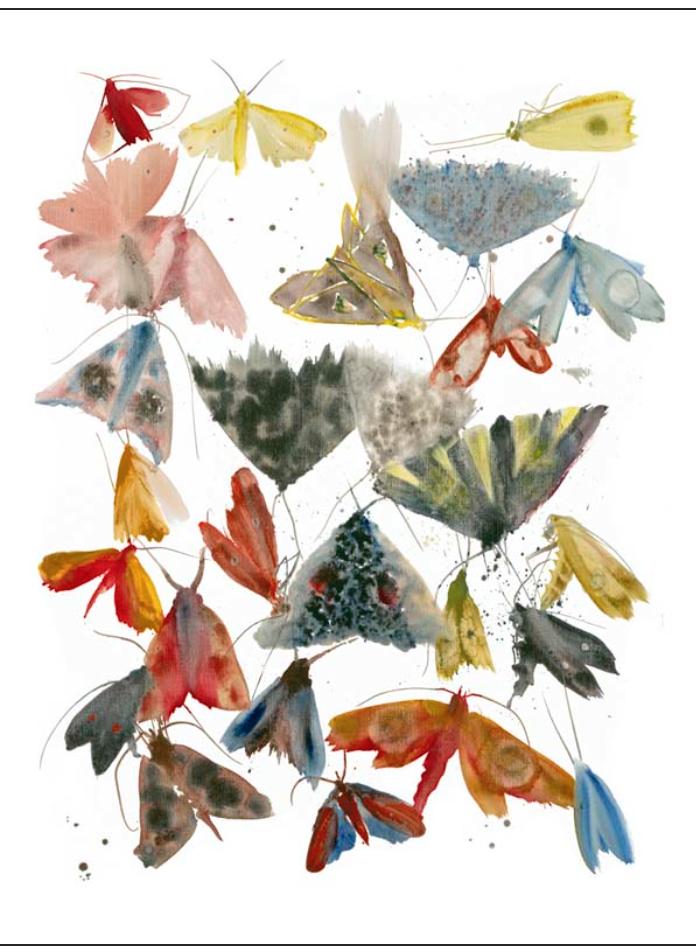 """Moths 4"" Via  Allyson Reynolds"