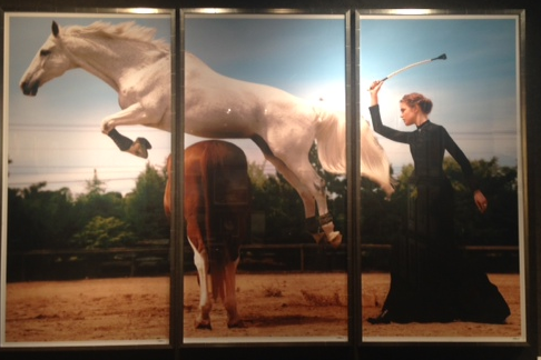 I am usually not a girl who loves horse art, but I really liked the scale of this image (huge!) and the triptych composition.