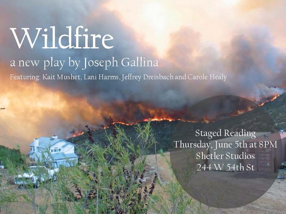 Wildfire Staged Reading at Shetler Studios (244 West 54th Street) on Thursday, June 5th at 8pm!