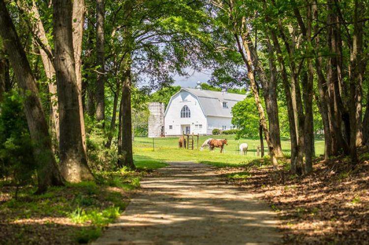 dairy-barn-asc-greenway.jpg