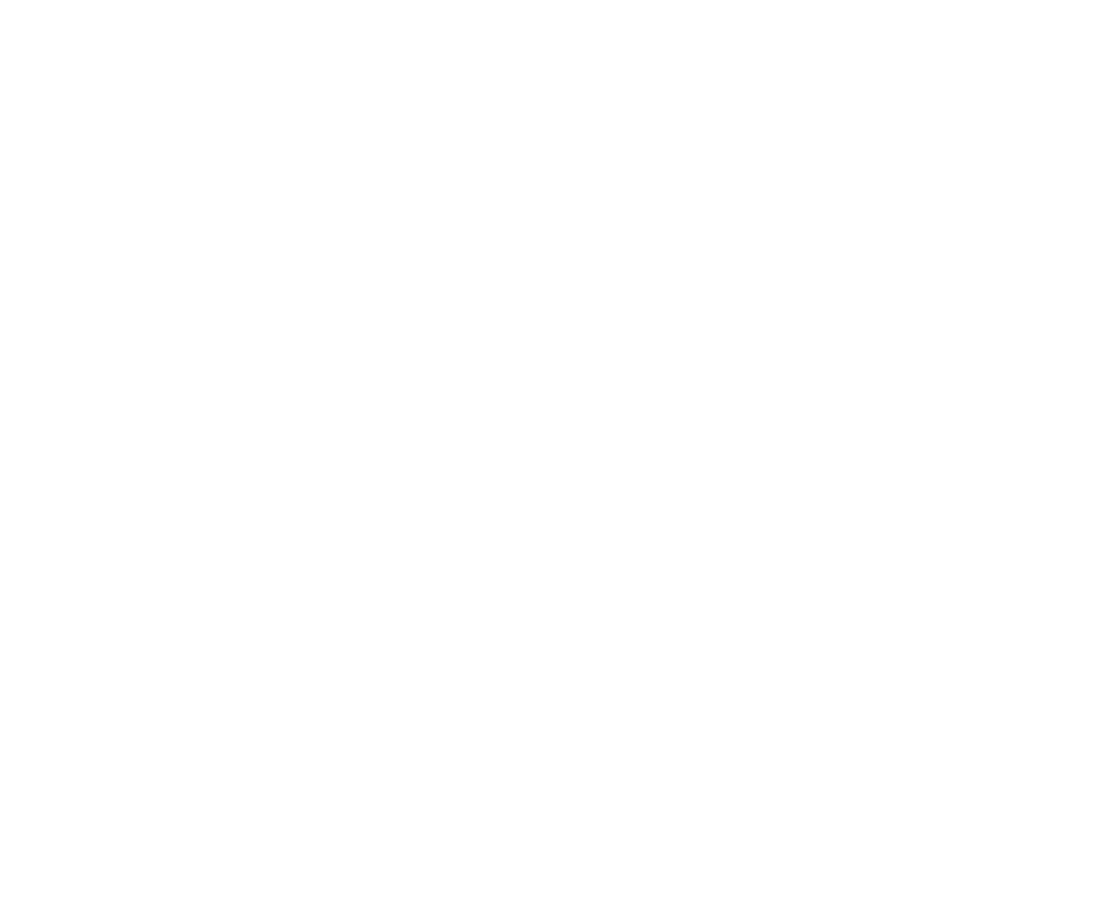 A New Brain Overlay.png