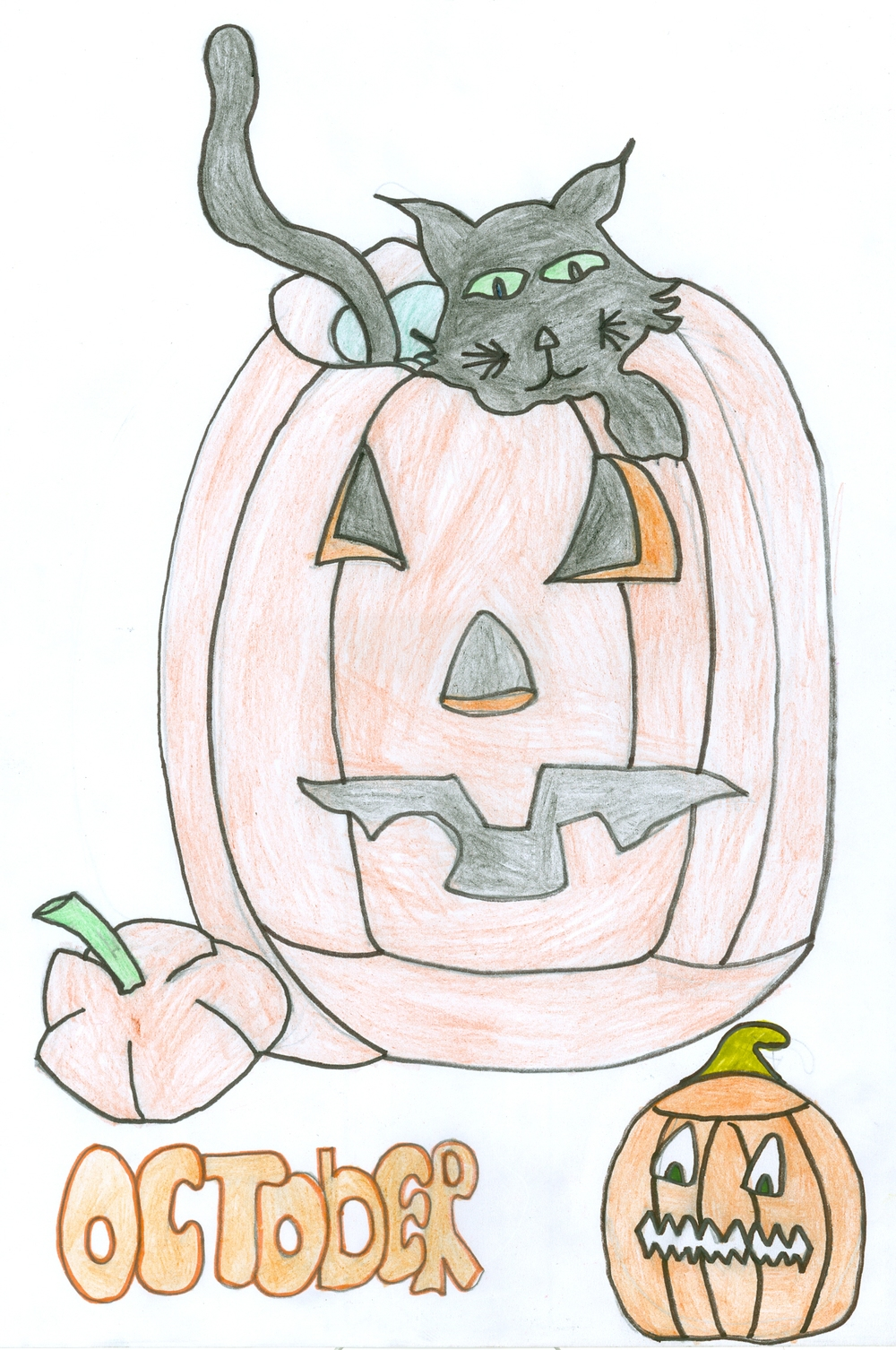 Cameron Campbell Age 13 (Pumpkin and Cat).jpg