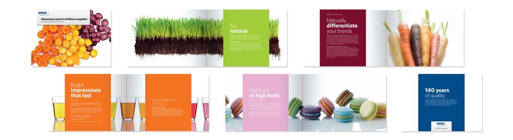 Chr. Hansen Natural Colors   Brochure design for Chr Hansen med fokus på nok verdens største portfolio af naturlige farver til fødevarer og væsker.