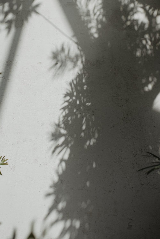 Anita-Simon-22_WEBB.jpg