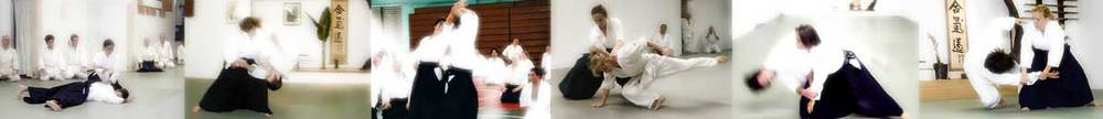 pictures © copyright: new york aikikai / javier dominguez