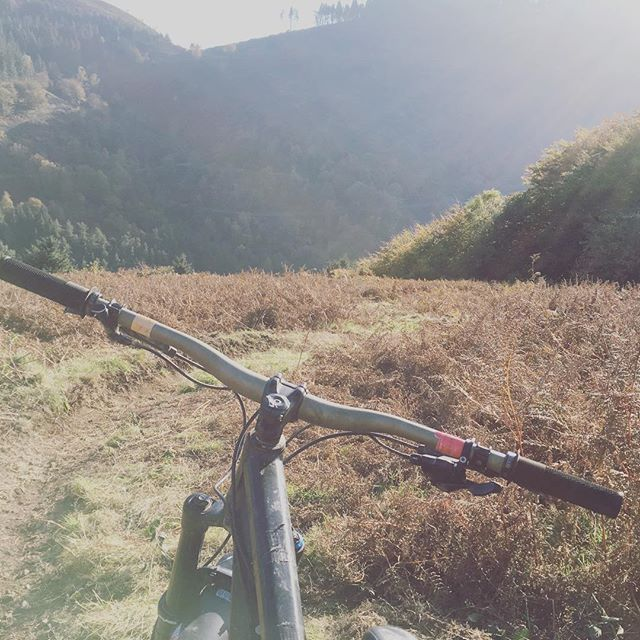 Fantastic day smashing around the twirch trail at cwmcarn- followed by some downhill lines and cheeky off piste! #cwmcarn #mylegs #ytcapra #braap #sun #leaves