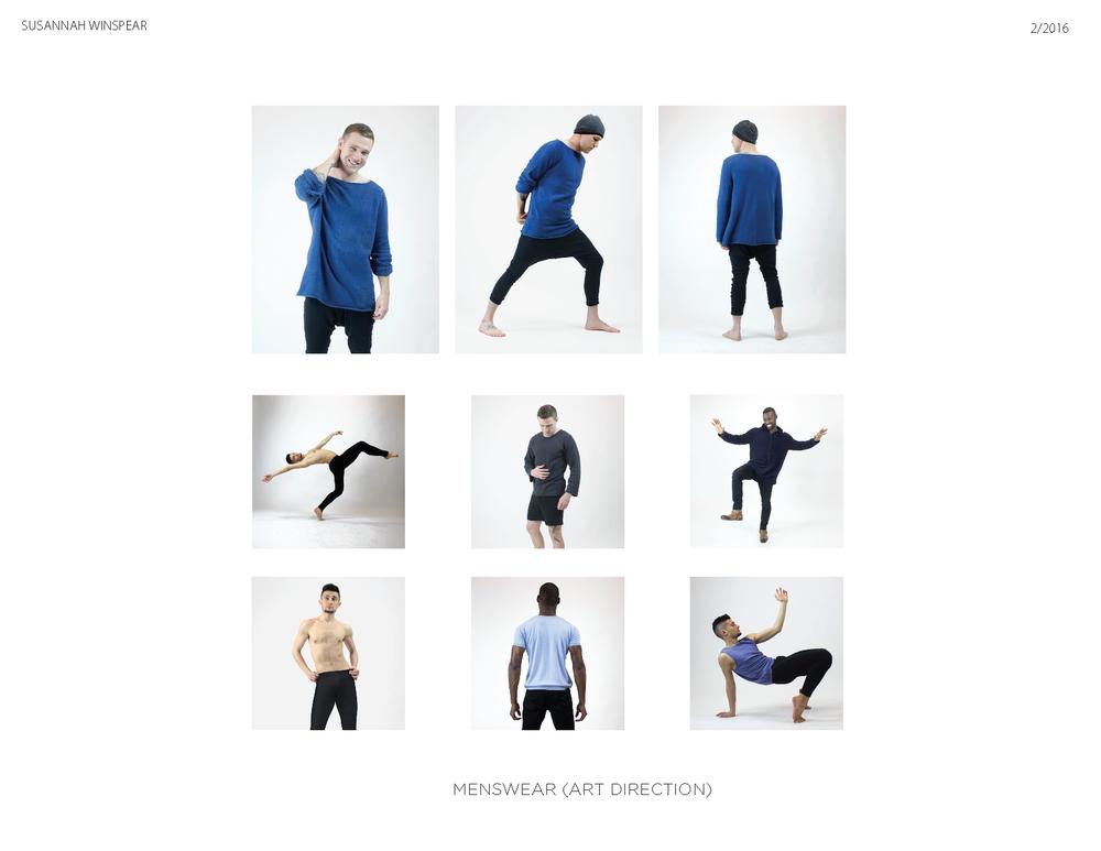 SWHallagan_Design_Portfolio_2016_Page_12.png