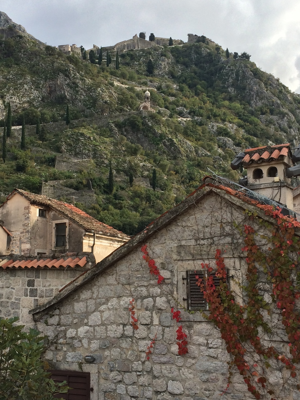 Wanderings along the old Kotor city walls.