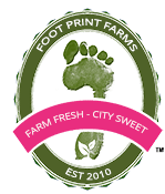 Footprint farms.png