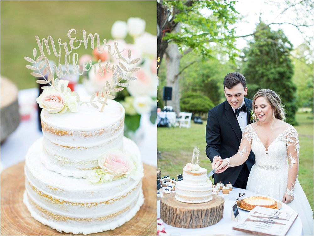 Cake Cutting- Wilkerson Wedding-1.jpg