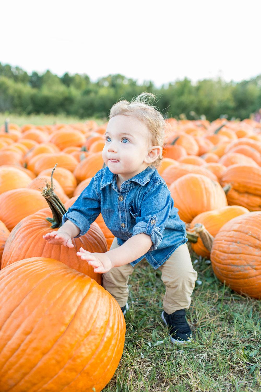 Mcneese Pumpkin Farm-17.jpg