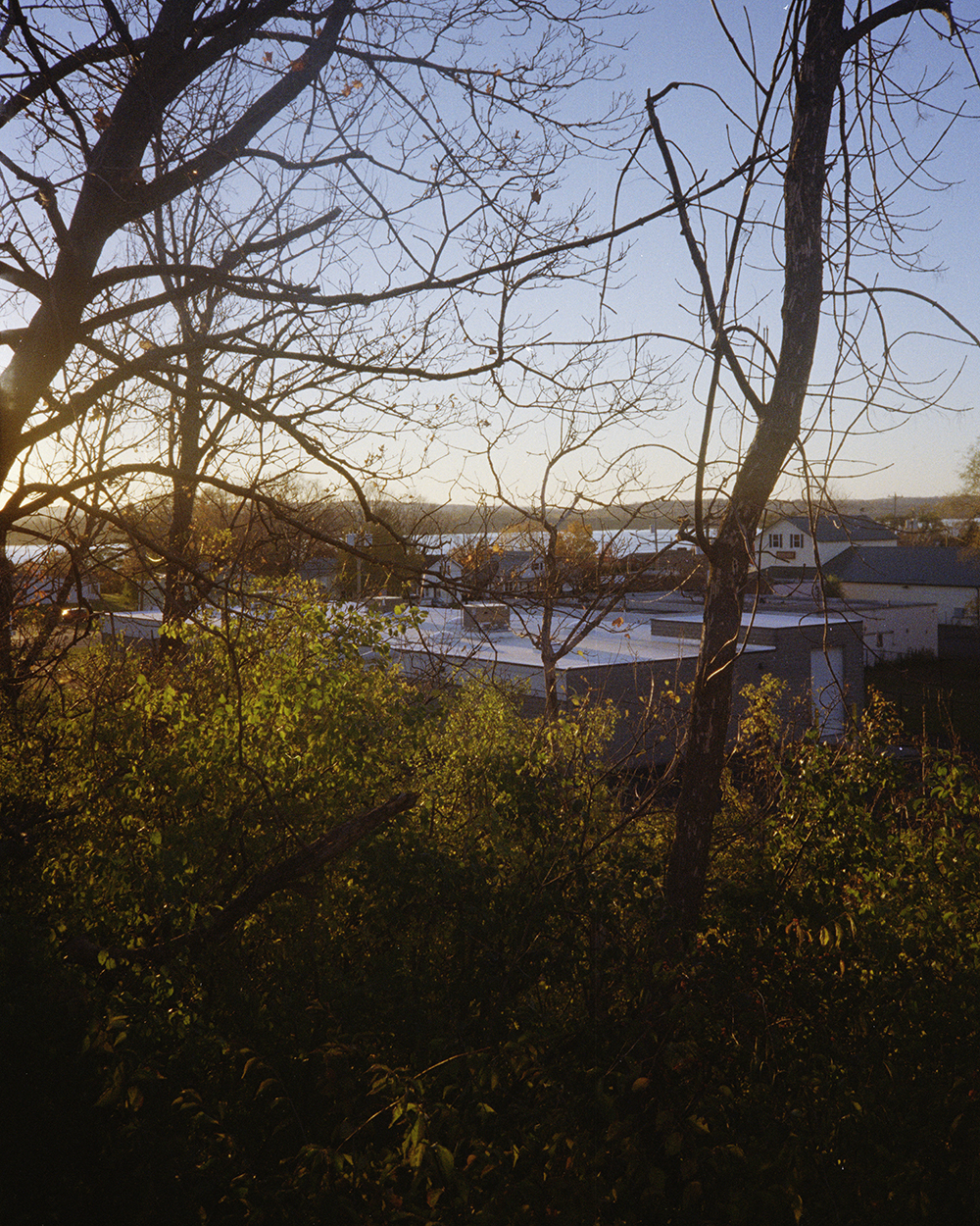 roofs_sun 001.jpg