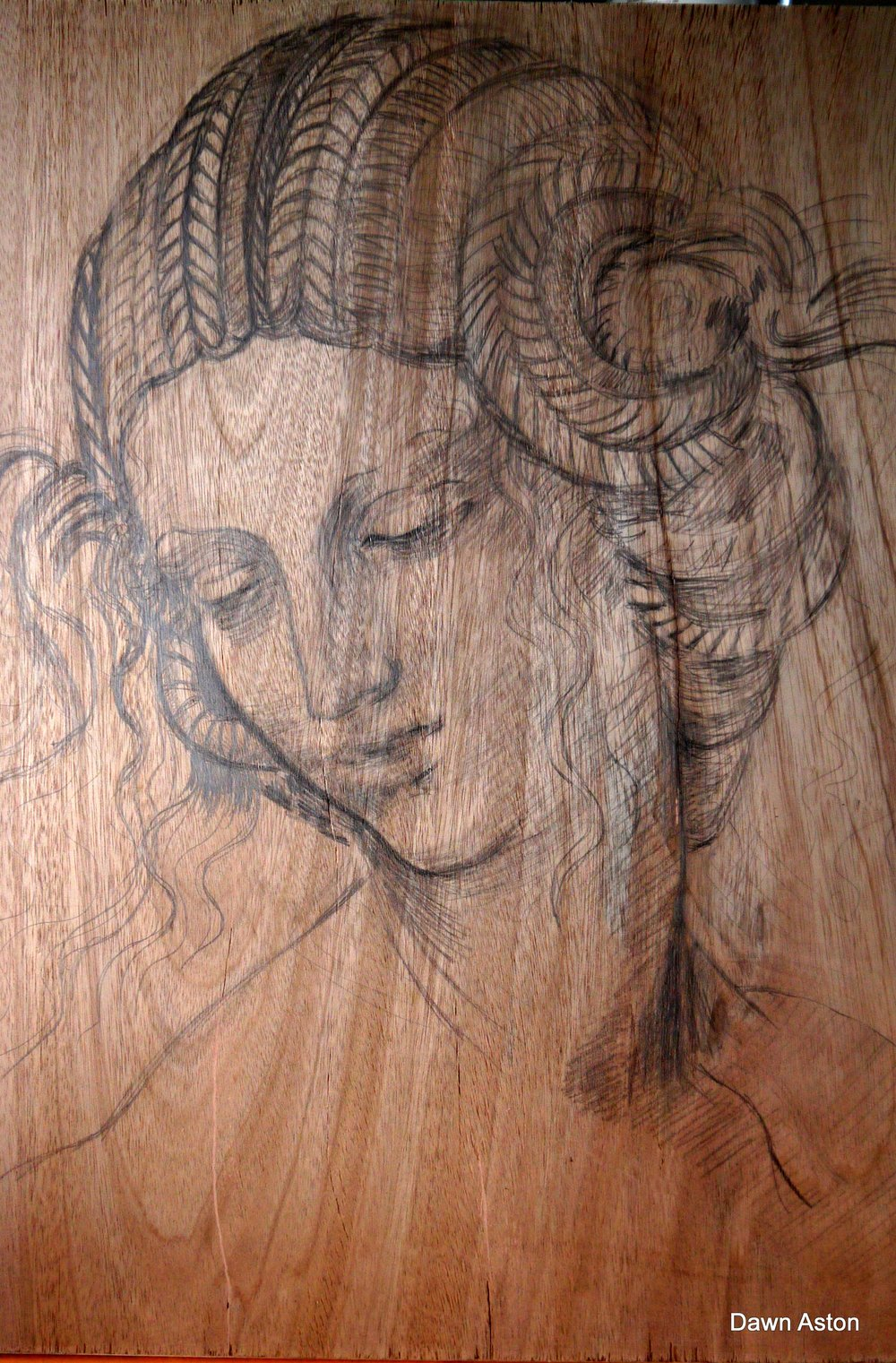 'After Leonardo' drawing on timber 2014 Dawn Aston.JPG
