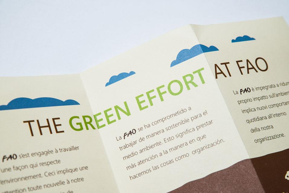 FAO-Greening-008.jpg