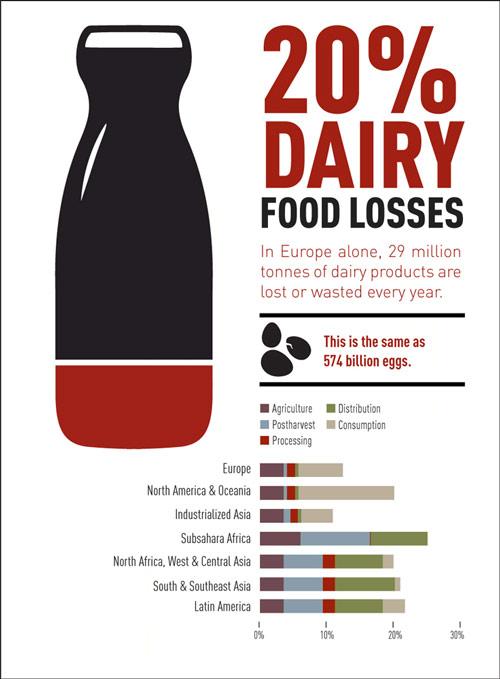 infographic-Dairy.jpg