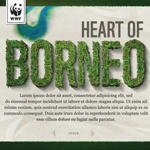 Heart of Borneo Website  Nam eum nonecusciet que prae eatur Molupti cullia sum nus conecer estrum voluptatus rerchicim fuga.…