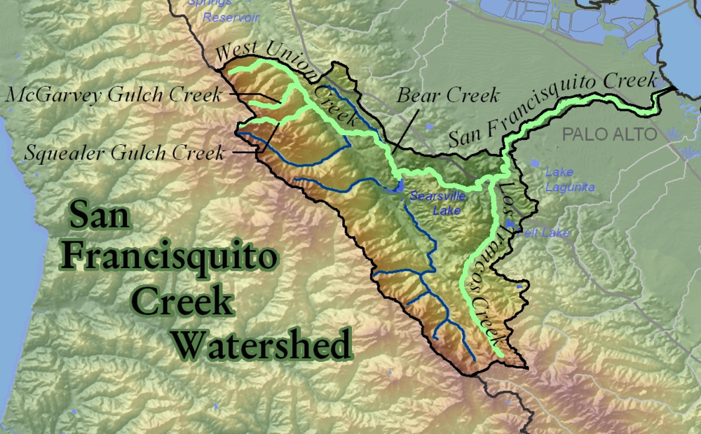 San Francisquito Creek Watershed is among a handful of   Anchor Watersheds for steelhead recovery   .  Full map available at  cemar.org .