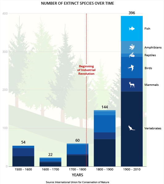 Stanford University Woods Institute; Science Advances Journal / June 19, 2015   [...]   Even under our assumptions, which would tend to minimize evidence of an incipient mass extinction, the average rate of vertebrate species loss over the last century is up to 114 times higher than the background rate. Under the 2 E/MSY background rate, the number of species that have gone extinct in the last century would have taken, depending on the vertebrate taxon, between 800 and 10,000 years to disappear.     These estimates reveal an exceptionally rapid loss of biodiversity over the last few centuries, indicating that a sixth mass extinction is already under way.  Averting a dramatic decay of biodiversity and the subsequent loss of ecosystem services is still possible through intensified conservation efforts, but that window of opportunity is rapidly closing.      Read more at:    http://advances.sciencemag.org/content/1/5/e1400253.full    https://woods.stanford.edu/news-events/news/mass-extinction-here