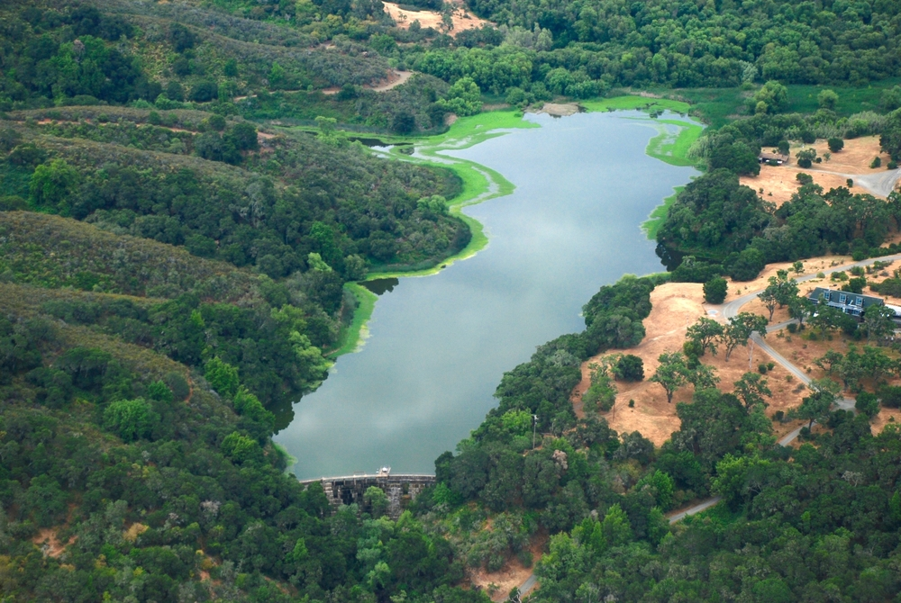 Stanford's Searsville Dam & Reservoir