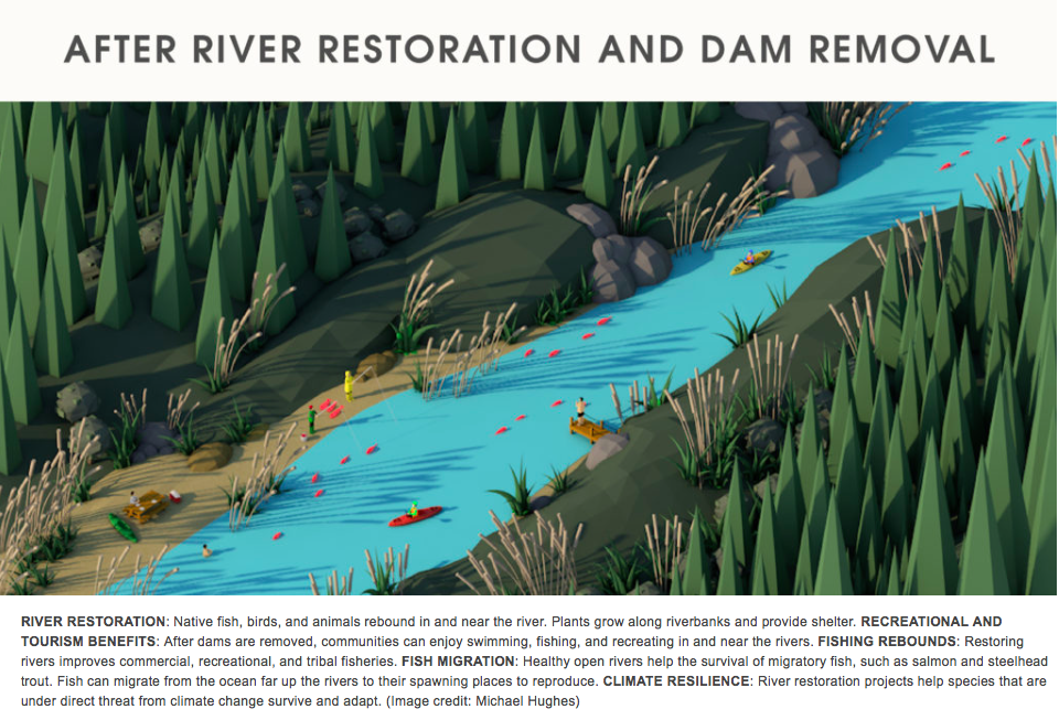 "January 2017: Hewlett Foundation gives $50 million for dam removal      The first three projects to receive grant funding are the Matilija Dam in Ventura, California; a series of dams and obstructions in Oregon's Rogue River basin; and the Nelson Dam on the Naches River in Yakima, Washington.  Not on the current list is the dam on Corte Madera Creek that created Searsville Lake, a private lake owned by Stanford University in the Jasper Ridge Biological Preserve.   Opponents of that dam say its removal would improve the health of the San Francisquito Creek watershed, including restoring a route for steelhead trout to swim upstream and spawn.  Among those opponents is Matt Stoecker, director of Beyond Searsville Dam, who called the Open Rivers Fund progressive and collaborative ""where the dam owner supports transitioning away from an obsolete dam and towards less harmful options. ... When Stanford is ready to move forward with Searsville Dam removal, multiple funds and grant programs like this are poised to support them.""  In a 2015 report, Stanford said that while it valued keeping the 65-foot-tall, 275-foot-wide dam up for flood control, it would consider steps to allow passage of fish.    Read more at:    http://www.almanacnews.com/print/story/2017/01/04/hewlett-foundation-gives-50-million-for-dam-removal"