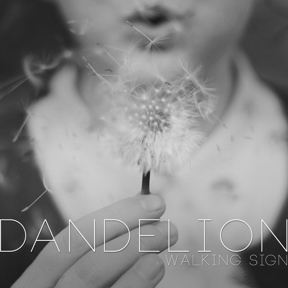 Dandelion Promo_2.jpg