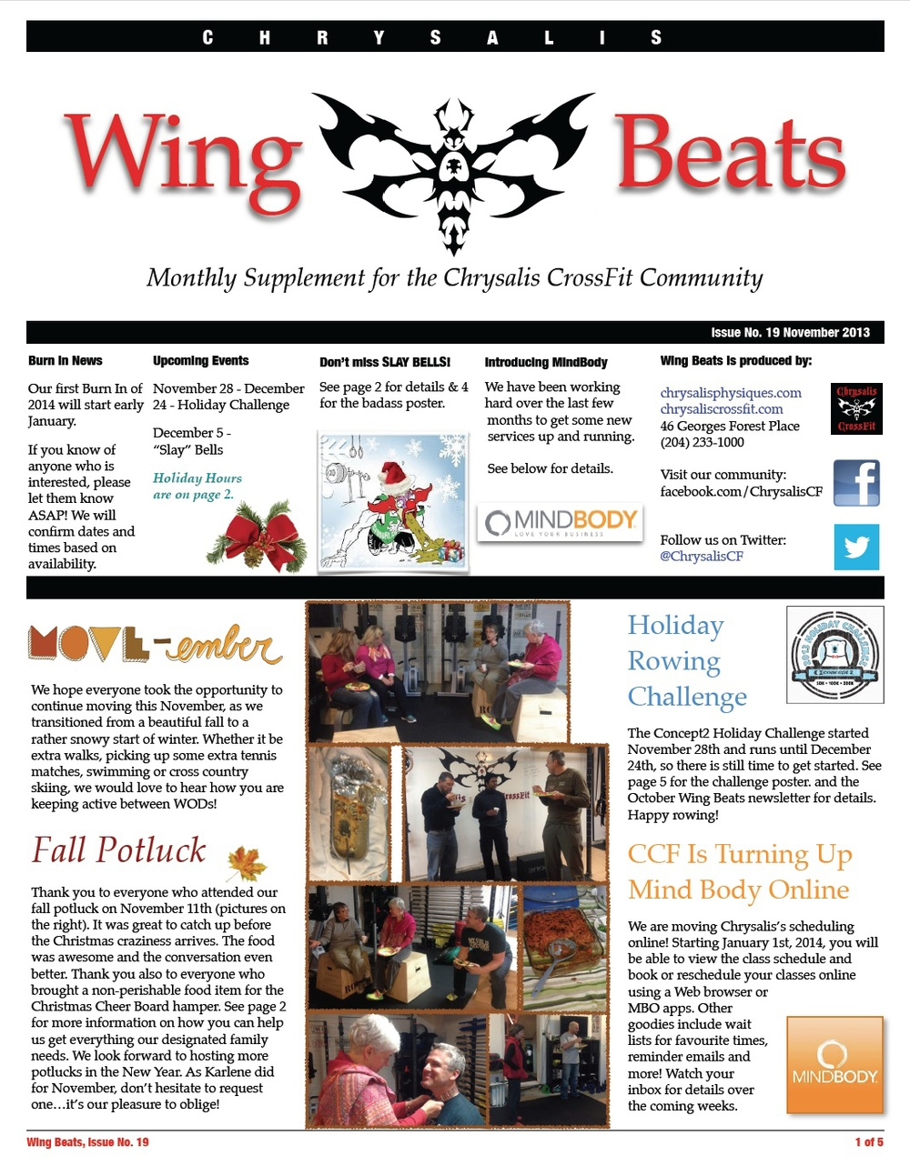 WingBeats Issue #19 - November 2013