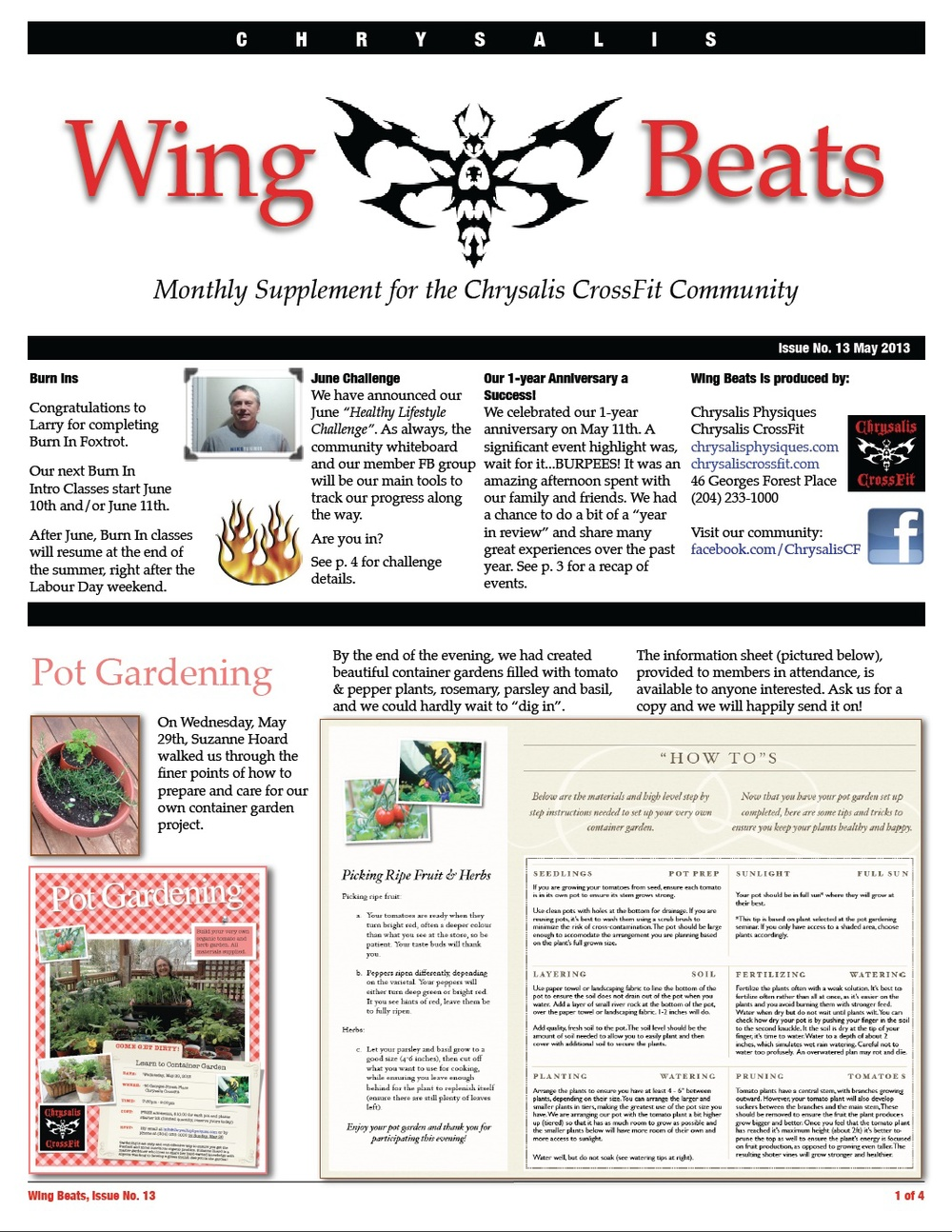 WingBeats Issue #13 - May 2013