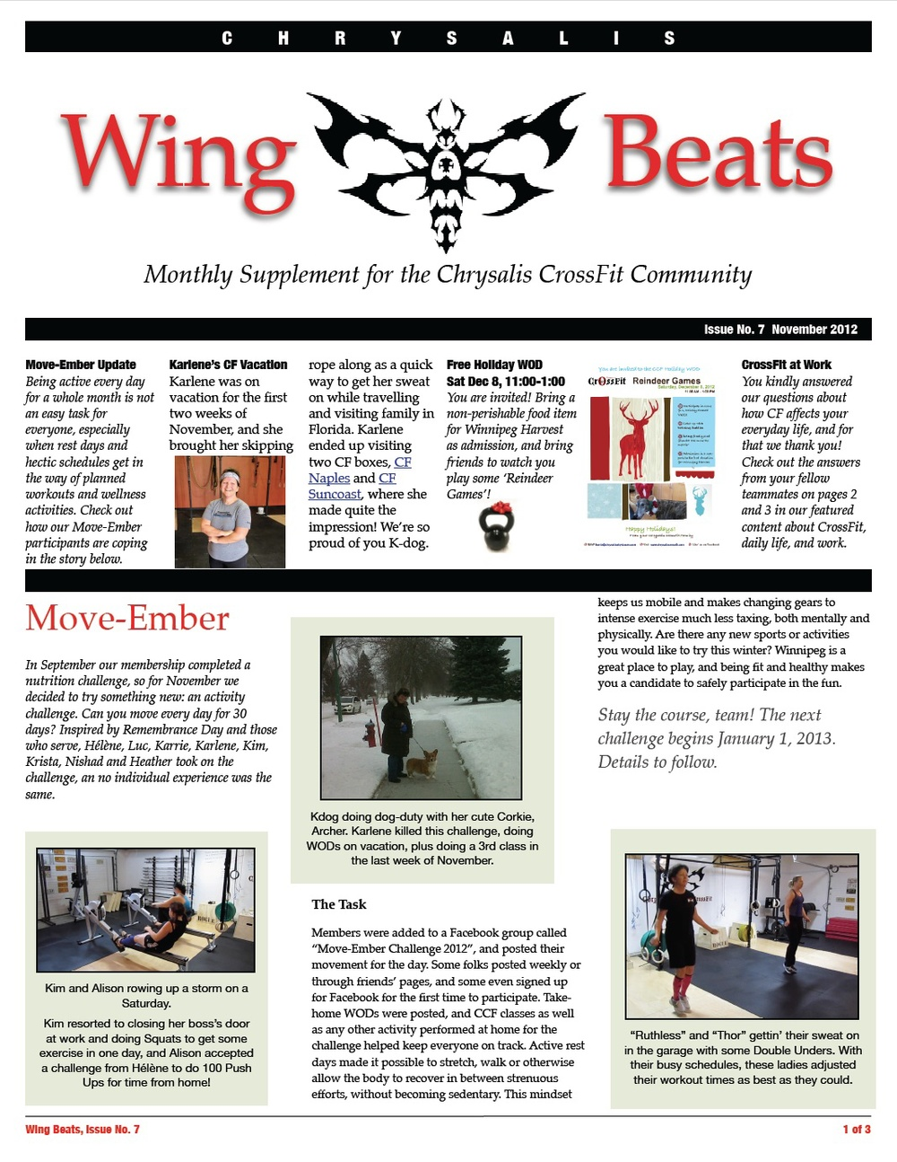 WingBeats Issue #7 - November 2012