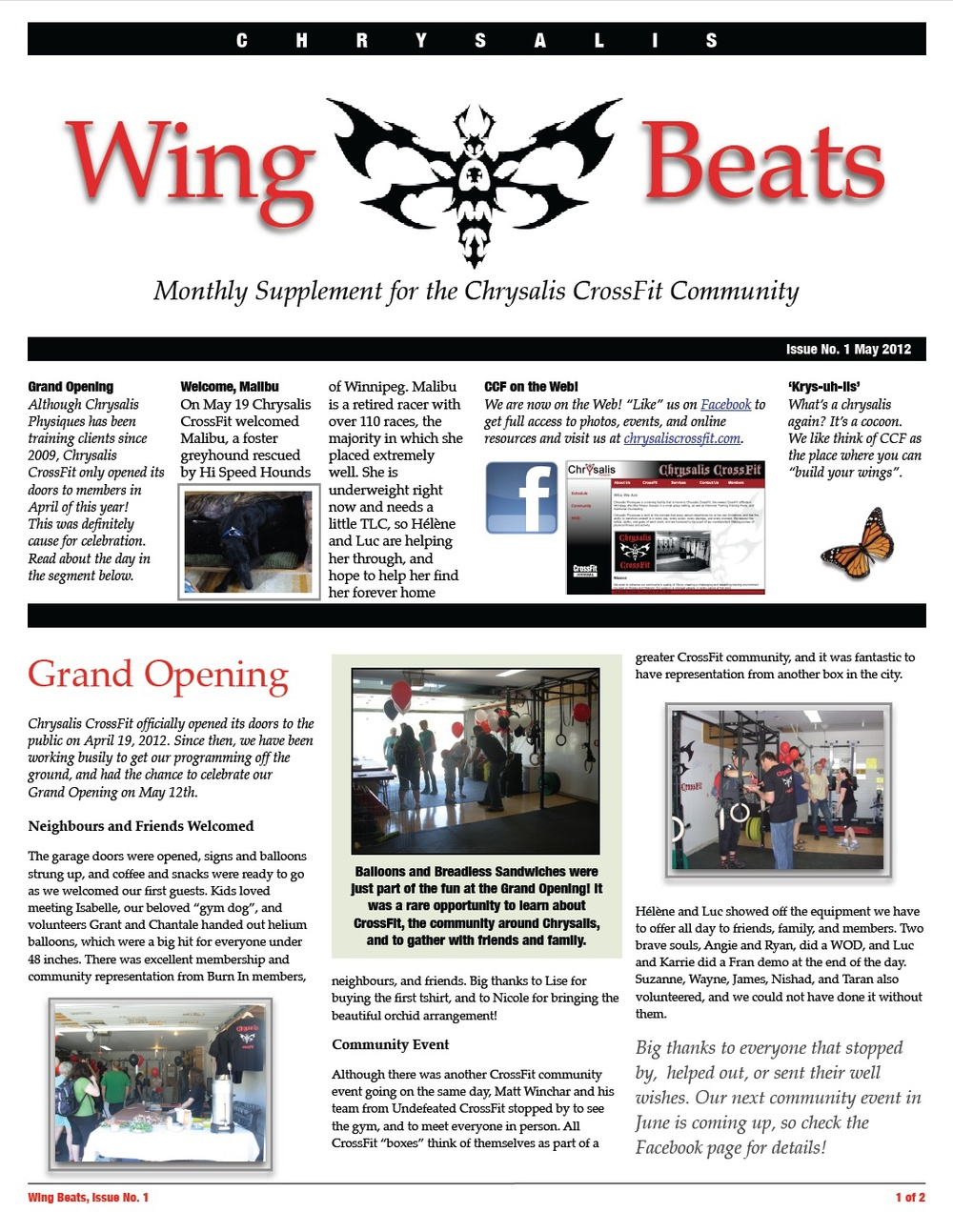 WingBeats Issue #1 - May 2012