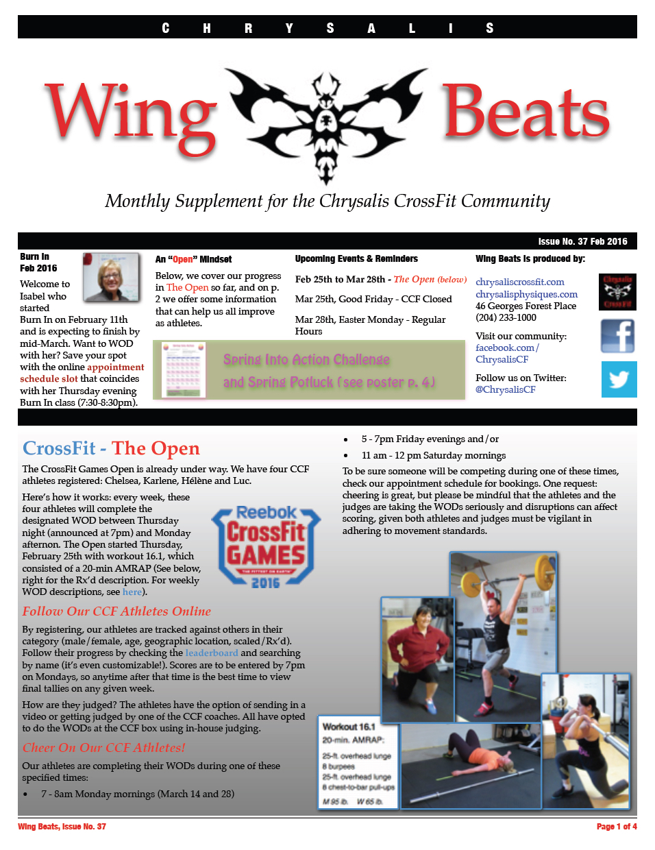 WingBeats Issue #37 - Feb 2016