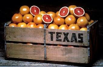 tx grapefruit.jpg