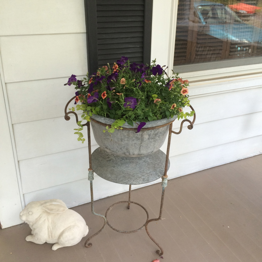 Some flowers for my front porch