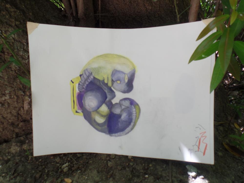 Dinosaur Fetus