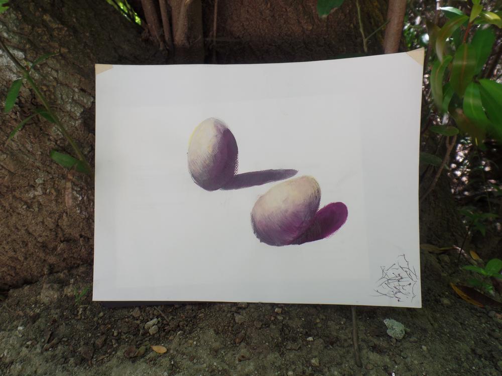 gauche_eggs