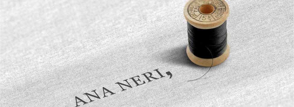 ANANERI-CASESTUDY-07081713.jpg