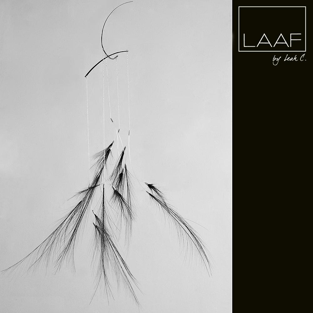LAAF AA Blackie.jpg