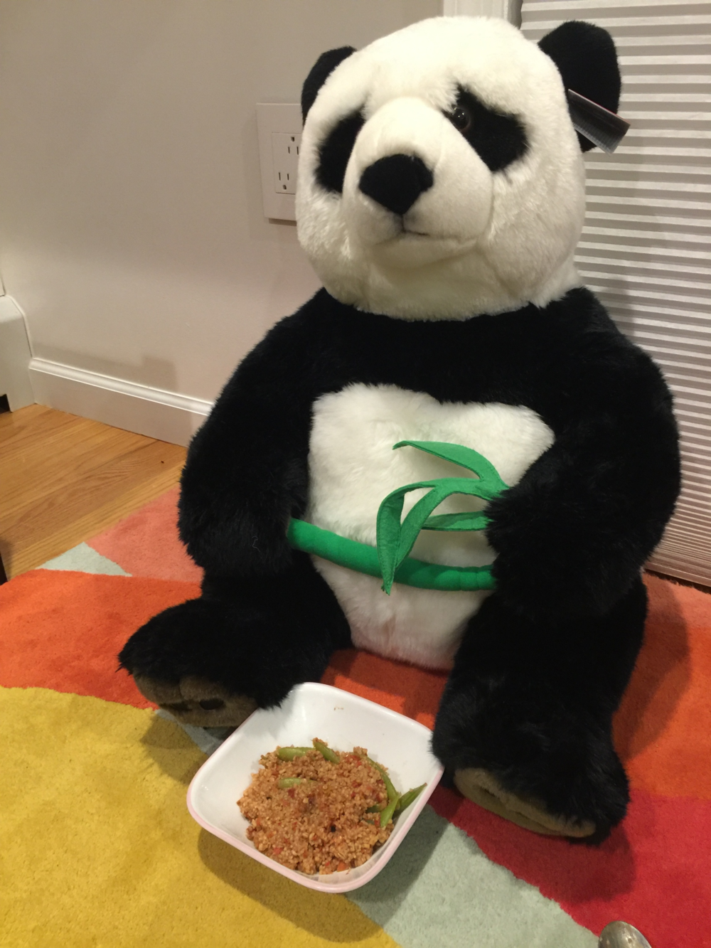 Mr. Panda was my dinner guest that night